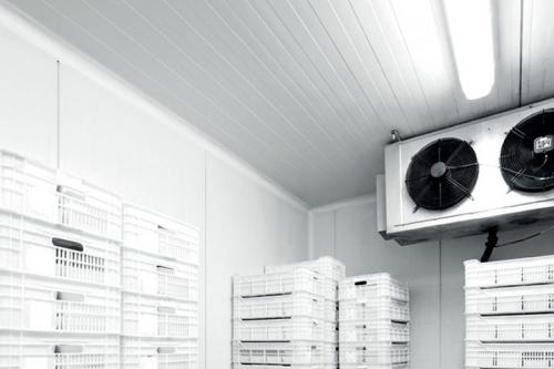 Camerele frigorifice modulare 3